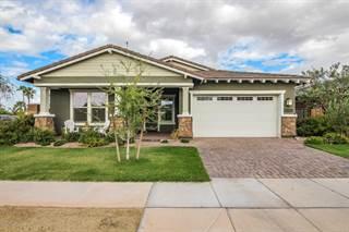 Single Family for sale in 2834 E ARABIAN Drive, Gilbert, AZ, 85296