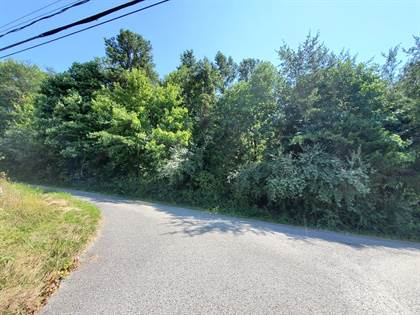 Lots And Land for sale in 0 D Street, Louisa, KY, 41230