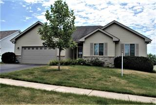 Single Family for sale in 5598 WHITE FOX, Montague, IL, 61102