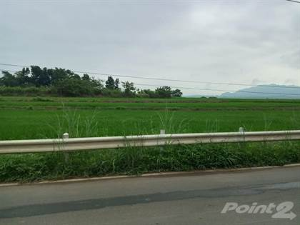 Farm And Agriculture for sale in San Miguel, Bulacan, Baliuag, Bulacan