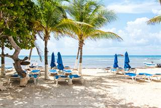 Centro real estate homes for sale in centro point2 homes for Actual studio playa del carmen