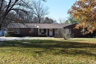 Single Family for sale in 261 Yaeger Lake Trail, Litchfield, IL, 62056