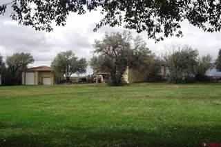 Single Family for sale in 20260 Fawn Circle, Eckert, CO, 81418