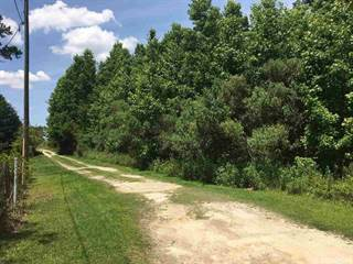 Farm And Agriculture for sale in 01 SW 53rd Path, Lake Butler, FL, 32054