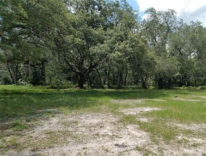 Lots And Land for sale in 2364 CLEMENT ROAD, Lutz, FL, 33549