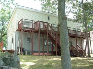 Single Family for sale in 4606 Lakeside Drive, Brethren, MI, 49619