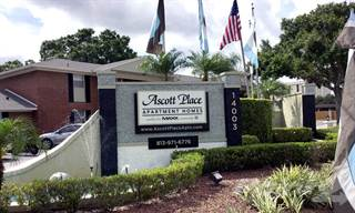 Apartment for rent in Ascott Place Apartments, Tampa, FL, 33613
