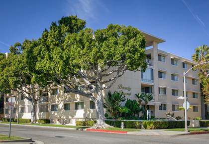 Apartment for rent in 317 N. Palm Dr., Beverly Hills, CA, 90210