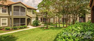 Apartment for rent in Park Crest at Innisbrook - Augusta, Palm Harbor, FL, 34683