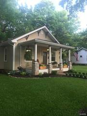 Single Family for sale in 313 Center Street, Farmington, MO, 63640
