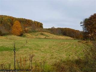 Farm And Agriculture for sale in TBD Carl Zinn Road, Independence, WV, 26374