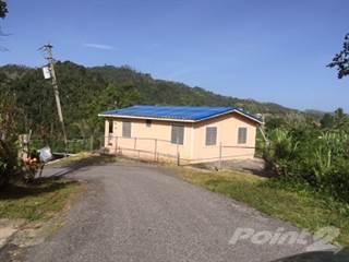Residential Property for sale in BO YAYALES ***REDUCIDO DE PRECIO***, Adjuntas, PR, 00601