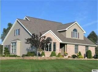 Single Family for sale in 6844 NAPOLEON RD, Jackson, MI, 49201