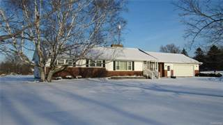 Single Family for sale in 9309 STATE, Goodrich, MI, 48438