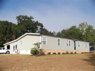 Residential Property for sale in 377 NE Country Kitchen, Madison, FL, 32340