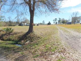 Residential Property for sale in 295 CR 810, Buna, TX, 77612