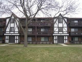 Condo for sale in 6 Timber Lane 13, Vernon Hills, IL, 60061
