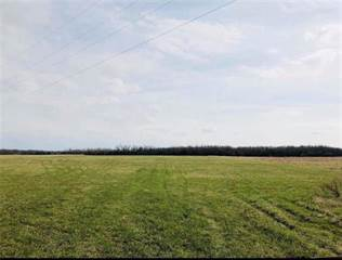 Farm And Agriculture for sale in SW 4508 County Road, Hume, MO, 64752