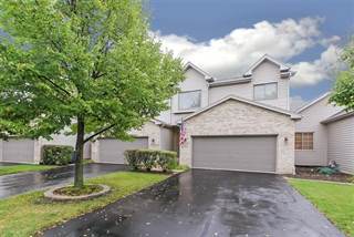 Townhouse for sale in 123 Deer Run Lane, Elgin, IL, 60120