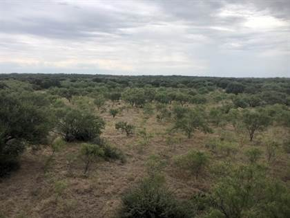 Lots And Land for sale in 275 Sika Trail, Eden, TX, 76837