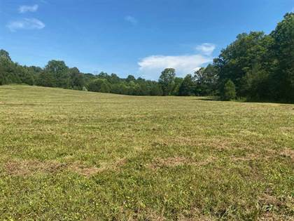 Lots And Land for sale in 1906 W Froedge-Dubree Rd, Summer Shade, KY, 42166