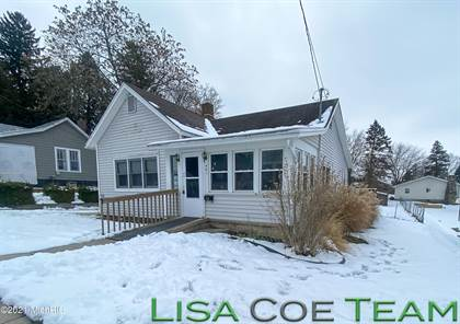 Residential Property for sale in 461 Allen Street, Ionia, MI, 48846