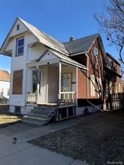Multi-family Home for sale in 1426 JUNCTION, Detroit, MI, 48209
