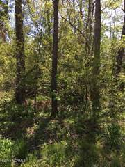 Land for sale in 21 Hughes Road, Hampstead, NC, 28443