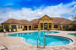 Apartment for rent in Delano at Cypress Creek Apartments - B2 (Carlyle), Wesley Chapel, FL, 33544