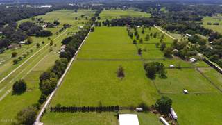 Farm And Agriculture for sale in 5800 SE 145th, Summerfield, FL, 34491