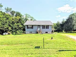 Single Family for sale in 3675 Flucom, De Soto, MO, 63020