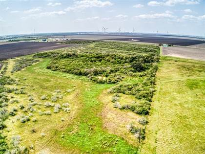 Lots And Land for sale in 191046 HWY 136 & CR 4241 Hwy, Gregory, TX, 78359