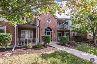 Condo for sale in 1214 Chalet Road 204, Naperville, IL, 60563