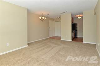 Apartment for rent in Mandalay on 4th, St. Petersburg, FL, 33716