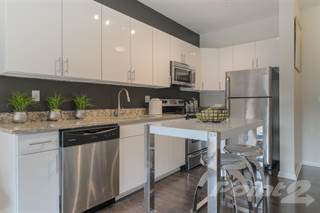 Apartment for rent in South16* - B1 (The Woods), VA, 24016