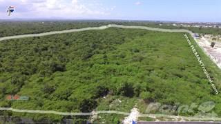 Land for sale in Land for Sale 47,648m  Bavaro Punta Cana, Bavaro, La Altagracia