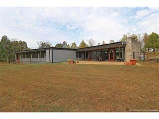 Single Family for sale in 6789 Vo-Tech Road, Bonne Terre, MO, 63628