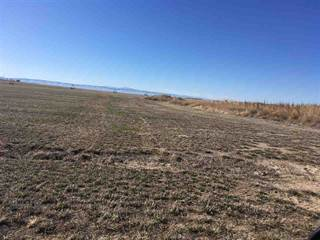 Farm And Agriculture for sale in 19000 S Cole Rd, Orchard, ID, 83634