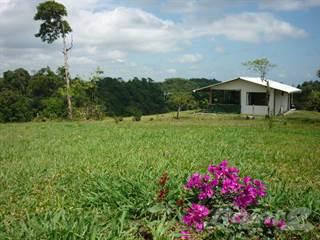 Residential Property for sale in 12.36 acres in Sarapiqui BARGAIN, Sarapiqui, Heredia