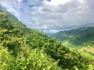 Single Family for sale in Km Hm 7.2 CARR 615, Ciales, PR, 00638