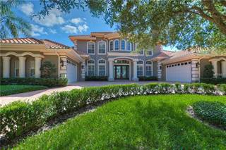 Single Family for sale in 10534 PONTOFINO CIRCLE, Trinity, FL, 34655