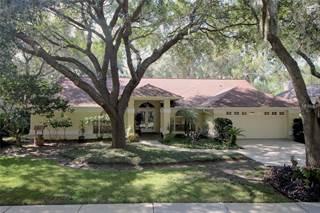 Single Family for sale in 7130 WAREHAM DRIVE, Tampa, FL, 33647