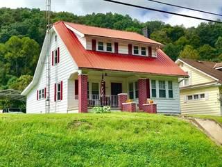Single Family for sale in 5923 McClellan Highway, West Hamlin, WV, 25506