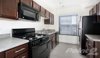 Apartment for rent in Reside on Clarendon - Convertible - Small, Chicago, IL, 60613