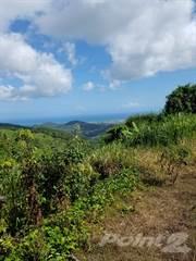 Land for sale in Carr #15 Bo Palmas, Guayama, PR, 00784