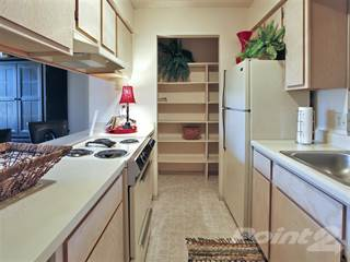 Apartment for rent in Spring Lake I/II - Classic Executive Suite - Fully Furnished & Paid Utilities, Russellville, AR, 72801