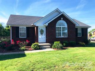 Residential for sale in 1024 Walnut Creek Drive, Coxs Creek, KY, 40004