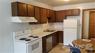 Condo for rent in 419 Wilkin Ave, MN, 56520