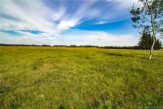 Farm And Agriculture for sale in 46430 RANGE ROAD 183, Rural Camrose County, Alberta