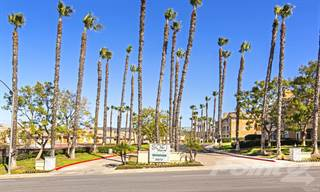 Apartment for rent in Sofi Canyon Hills - 2B2B-A (Upgraded), San Diego, CA, 92129
